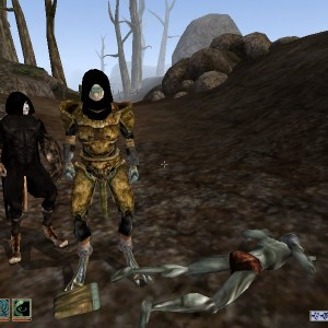 TES-Oblivion and Morrowind