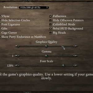 Graphics settings in Pillars of Eternity