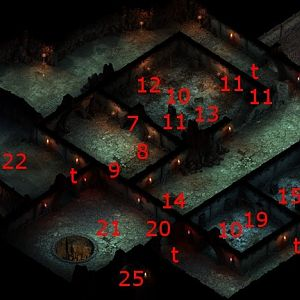Pillars of Eternity - Endless Paths Level 9 Map